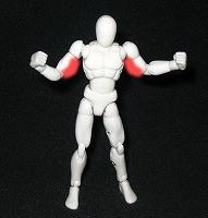 上腕三頭筋(二の腕)